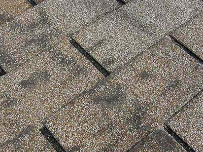 Lakeland Roofing Images